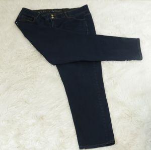 Lane Bryant Straight Leg Tighter Tummy Tech Jeans